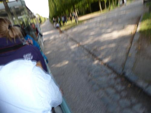 On the tram to the Grand Trianon. Look at that marvelous shoulder!