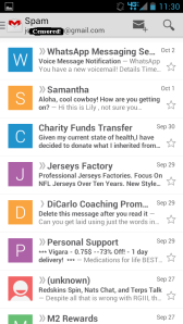 Chinese sports jerseys, bullshit chat requests, Viagra - typical